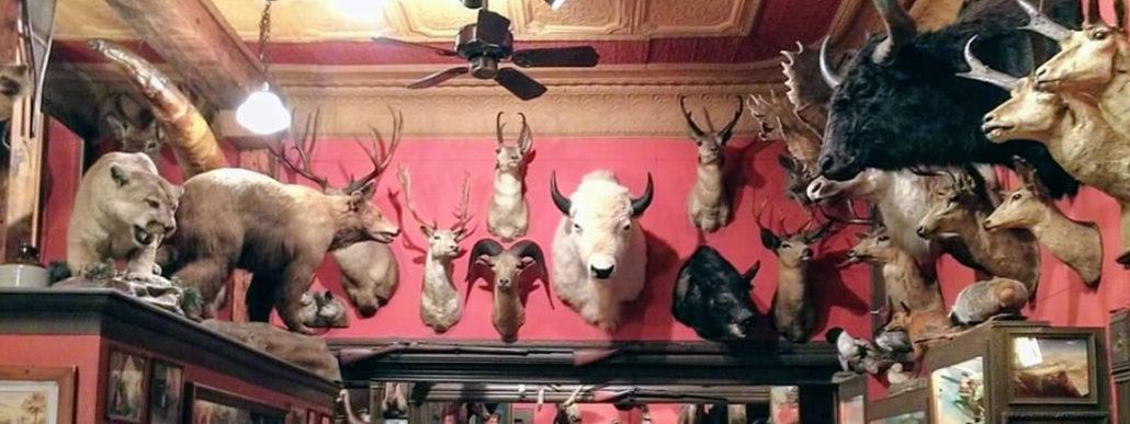 Oldest Bar in Denver