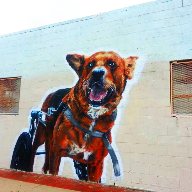 Denver Dog Street Art